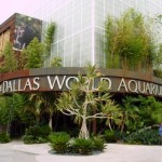 dallas-world-aquarium